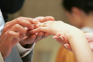 教会の結婚式で指輪交換をする新郎新婦の手の写真素材 [FYI01605834]