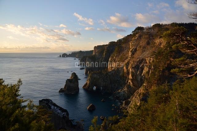 夜明けの海岸の写真素材 [FYI01606032]