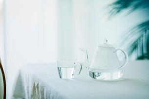 テーブルに置かれたティーポットとカップと観葉植物の写真素材 [FYI01606057]