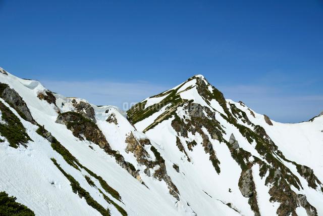 唐松岳の写真素材 [FYI01606073]