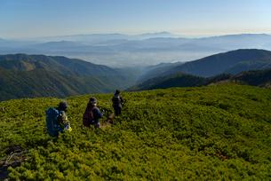 登山をする山ガールの写真素材 [FYI01606117]