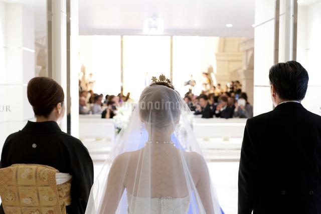 教会結婚式に向かう花嫁と両親の後ろ姿の写真素材 [FYI01606199]