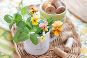 花と雑貨の写真素材 [FYI01606237]