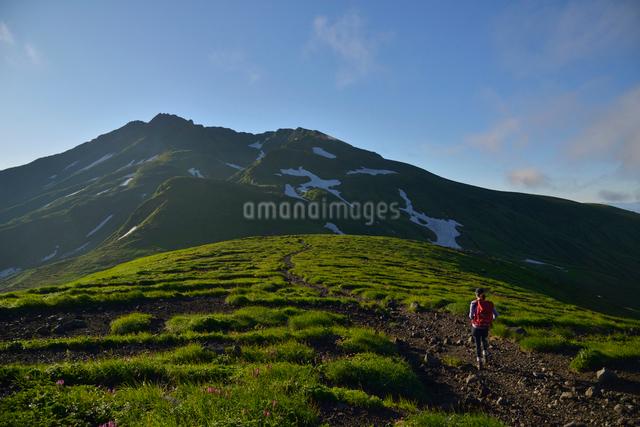 鳥海山と登山者の写真素材 [FYI01606307]