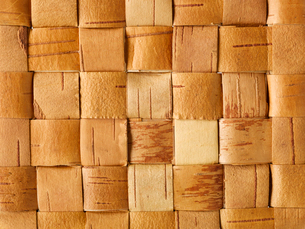 しらかばの木の皮の編みの写真素材 [FYI01606422]