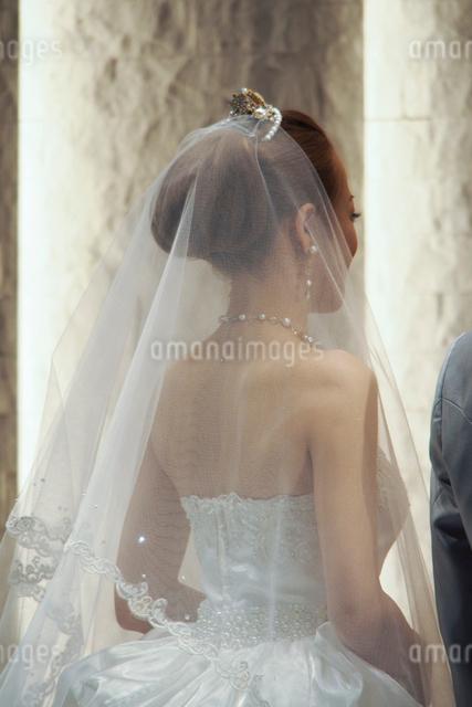 結婚式でウエディングドレスの新婦の後ろ姿の写真素材 [FYI01606442]