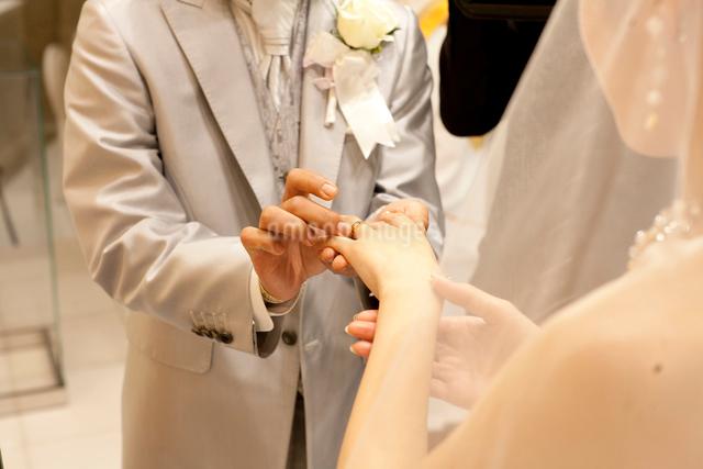 教会の結婚式で指輪交換をする新郎新婦の手の写真素材 [FYI01606774]