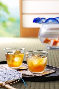 麦茶の写真素材 [FYI01606861]