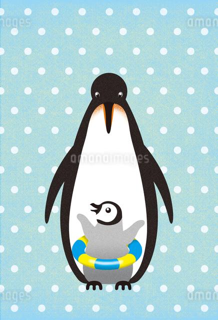 ペンギンサマーのイラスト素材 [FYI01606882]