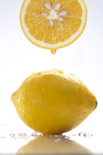 レモンの写真素材 [FYI01607080]
