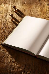 白紙の本とドングリの写真素材 [FYI01607279]
