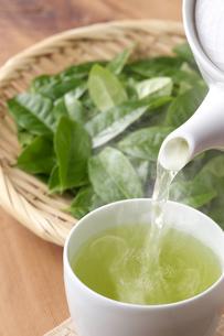 お茶と茶葉の写真素材 [FYI01607361]