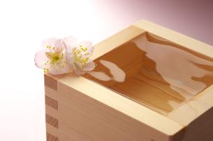 日本酒の写真素材 [FYI01607671]