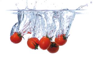 プチトマトの写真素材 [FYI01607685]