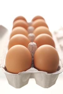 卵の写真素材 [FYI01607756]