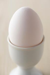 ゆで卵の写真素材 [FYI01607763]