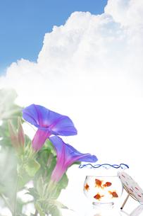 紫陽花と金魚鉢と青空の写真素材 [FYI01608019]