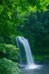 慈恩の滝の写真素材 [FYI01608405]