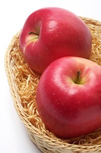 りんごの写真素材 [FYI01608616]