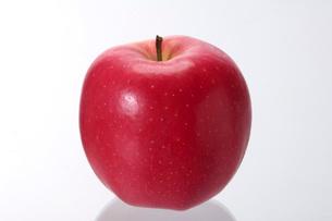 りんごの写真素材 [FYI01608821]