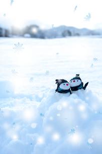 雪だるまの写真素材 [FYI01608997]