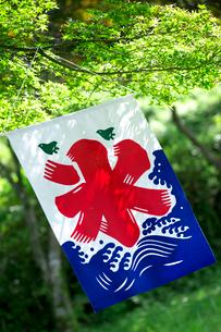 氷の旗の写真素材 [FYI01609035]