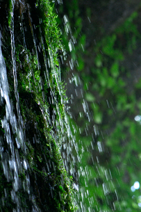 慈恩の滝の写真素材 [FYI01609118]