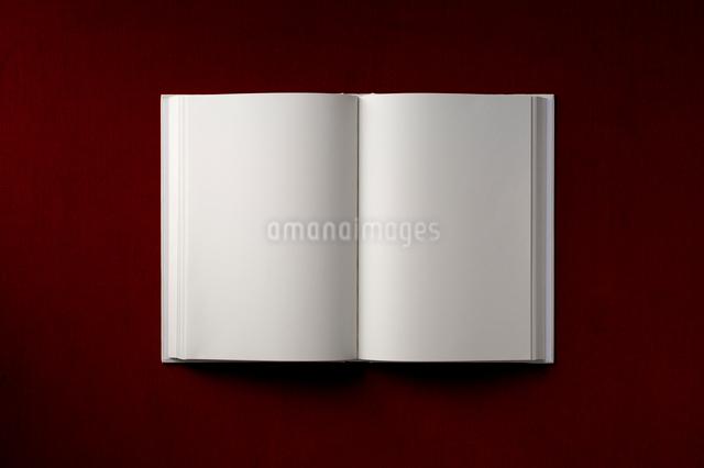 白紙の本の写真素材 [FYI01609178]