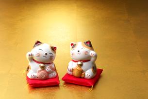 招き猫の写真素材 [FYI01609187]