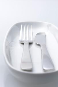 フォークとナイフの写真素材 [FYI01609294]