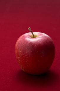 りんごの写真素材 [FYI01609371]