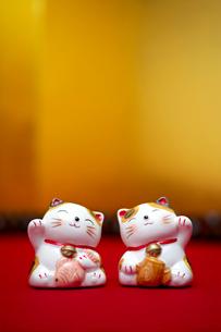招き猫の写真素材 [FYI01609381]