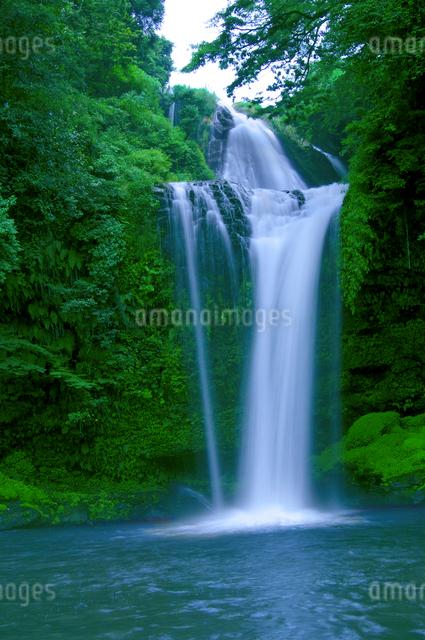 慈恩の滝の写真素材 [FYI01609403]