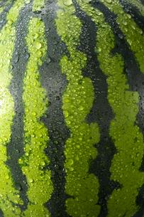 スイカと水滴の写真素材 [FYI01609417]