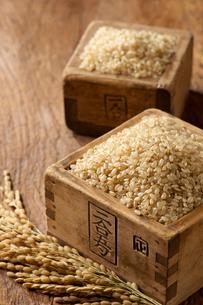 玄米と稲穂の写真素材 [FYI01609490]