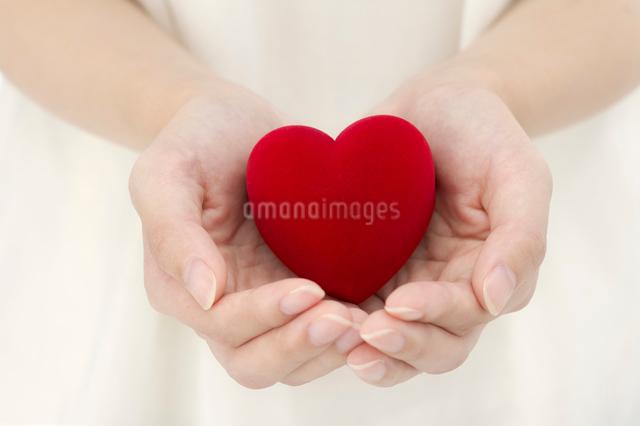 ハートを持つ女性の手の写真素材 [FYI01609518]