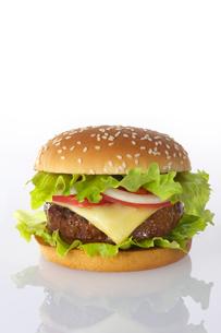 ハンバーガーの写真素材 [FYI01609536]