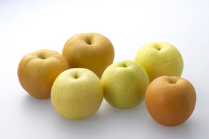 6種類の梨の写真素材 [FYI01609537]