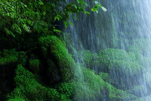 慈恩の滝の写真素材 [FYI01609568]