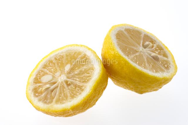 柚子の写真素材 [FYI01609994]