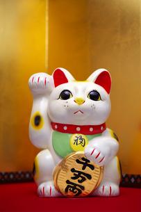 招き猫の写真素材 [FYI01610336]