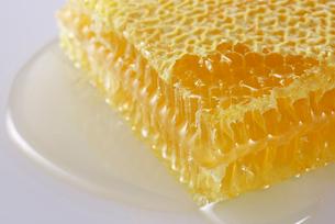 蜂蜜の写真素材 [FYI01610405]