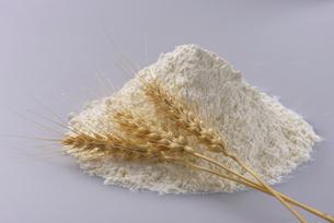 小麦と小麦粉の写真素材 [FYI01610422]
