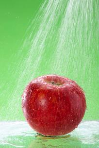 リンゴの写真素材 [FYI01610487]