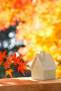 ミニチュアハウスと紅葉の写真素材 [FYI01610528]