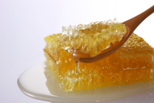 蜂蜜の写真素材 [FYI01610670]