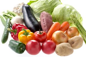 野菜集合の写真素材 [FYI01610735]