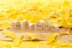 ミニチュアハウスとイチョウの写真素材 [FYI01610774]