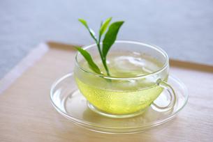 冷茶の写真素材 [FYI01610785]