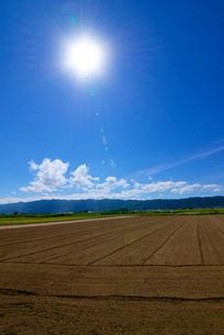 畑と耳納連山の写真素材 [FYI01610916]